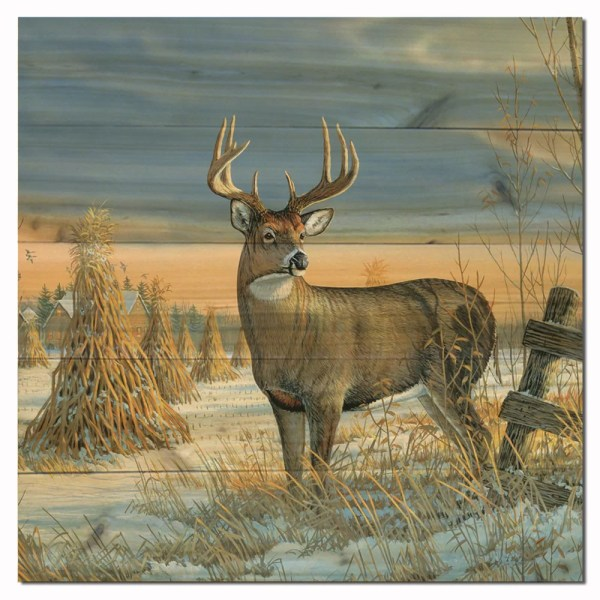 Wgi Whitetail Deer In Winter Sam Timm Painting Print Plaque &