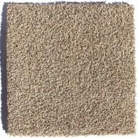 """Berkshire Flooring Zen Residential 24"""" x 24"""" Carpet Tile"""