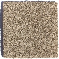 "Berkshire Flooring Zen Residential 24"" x 24"" Carpet Tile ..."
