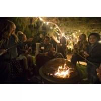 Traeger Pellet Grills Outdoor Fire Pit & Reviews | Wayfair