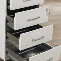 Symple Stuff 4 Drawer Steel Mobile File Cabinet & Reviews ...
