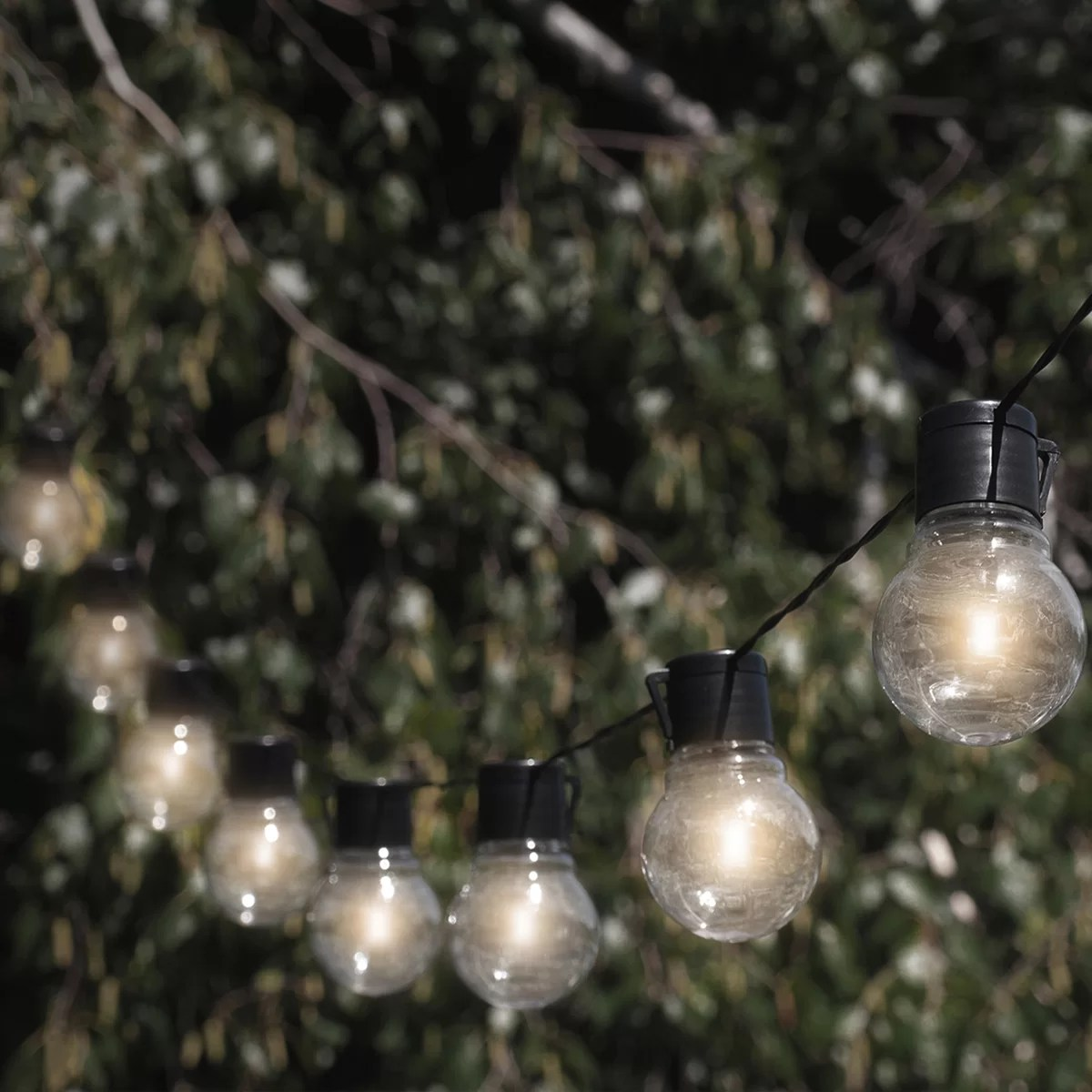 Touch of ECO Socialite 10Light 20 ft Solar Globe String Light  Reviews  Wayfair