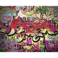 Ohpopsi City Graffiti Wall Mural | Wayfair UK