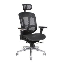 Wayfair Office Chairs Upholstered Kids Thornton 39s Supplies Ergoexec High Back Mesh