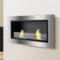 Ignis Lata Wall Mount Ethanol Fireplace | Wayfair.ca