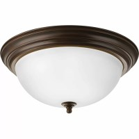 Progress Lighting 3 Light Flush Mount & Reviews | Wayfair