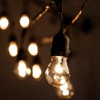 HometownEvolutionInc 50-Light Globe String Lights | Wayfair.ca