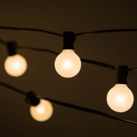 HometownEvolutionInc 100-Light Globe String Lights ...