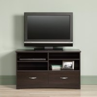 Sauder Beginnings TV Stand with Enclosed Storage & Reviews ...