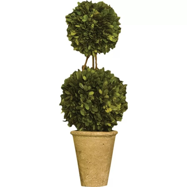 Preserved Boxwood Topiary Balls