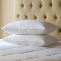 Sealy Posturepedic Primaloft Support Pillow & Reviews