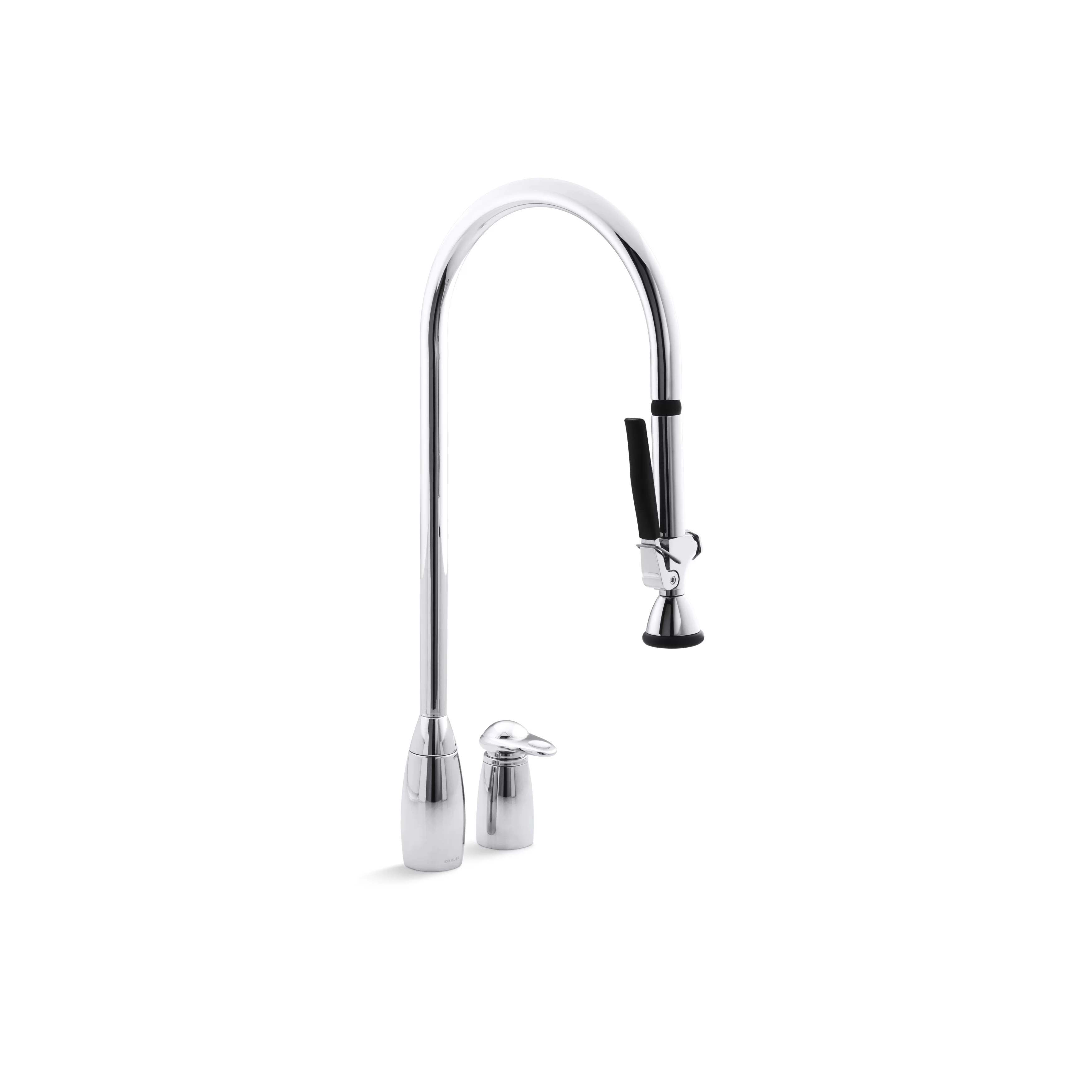 kitchen faucet with handspray costco faucets kohler promaster two hole sink