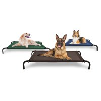 dog cot bed - 28 images - sporting dog solutions folding ...