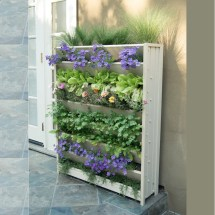 Age Garden Novelty Wall Planter &