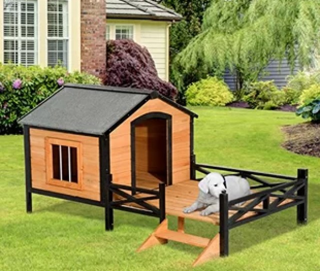 Fauntleroy Cabin Outdoor Covered Elevated Dog House
