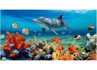 Kaufman Sales Dolphin Coral Reef Beach Towel & Reviews ...