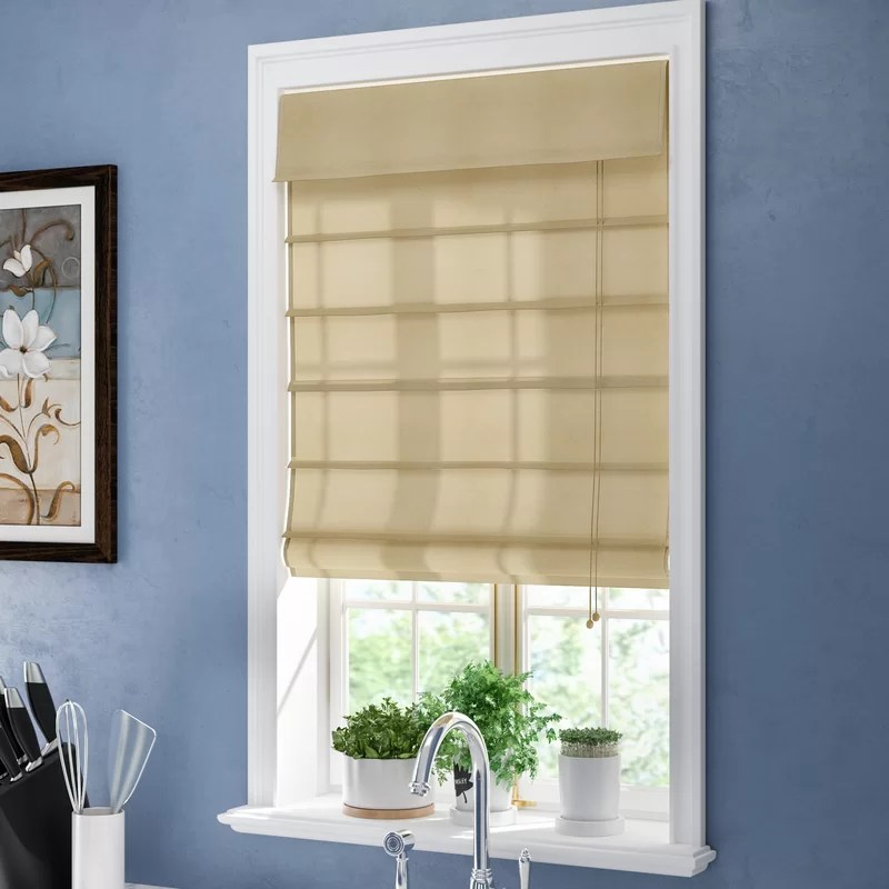 Room Darkening Beige Roman Shade & Reviews  Birch Lane