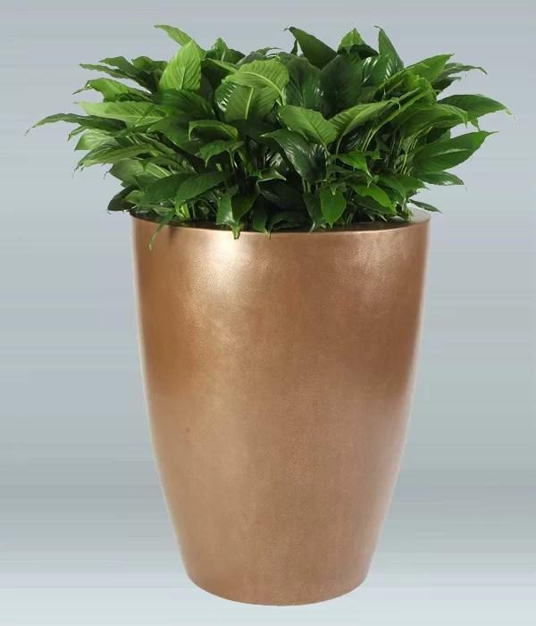 Raleigh Plastic Pot Planter Color: Teal