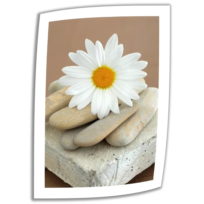 Daisy and Stones by Elena Ray Vintage Advertisement on Rolled Canvas Size: 48 H x 32 W