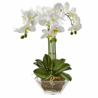 Nearly Natural Triple Phalaenopsis Orchid Floral ...