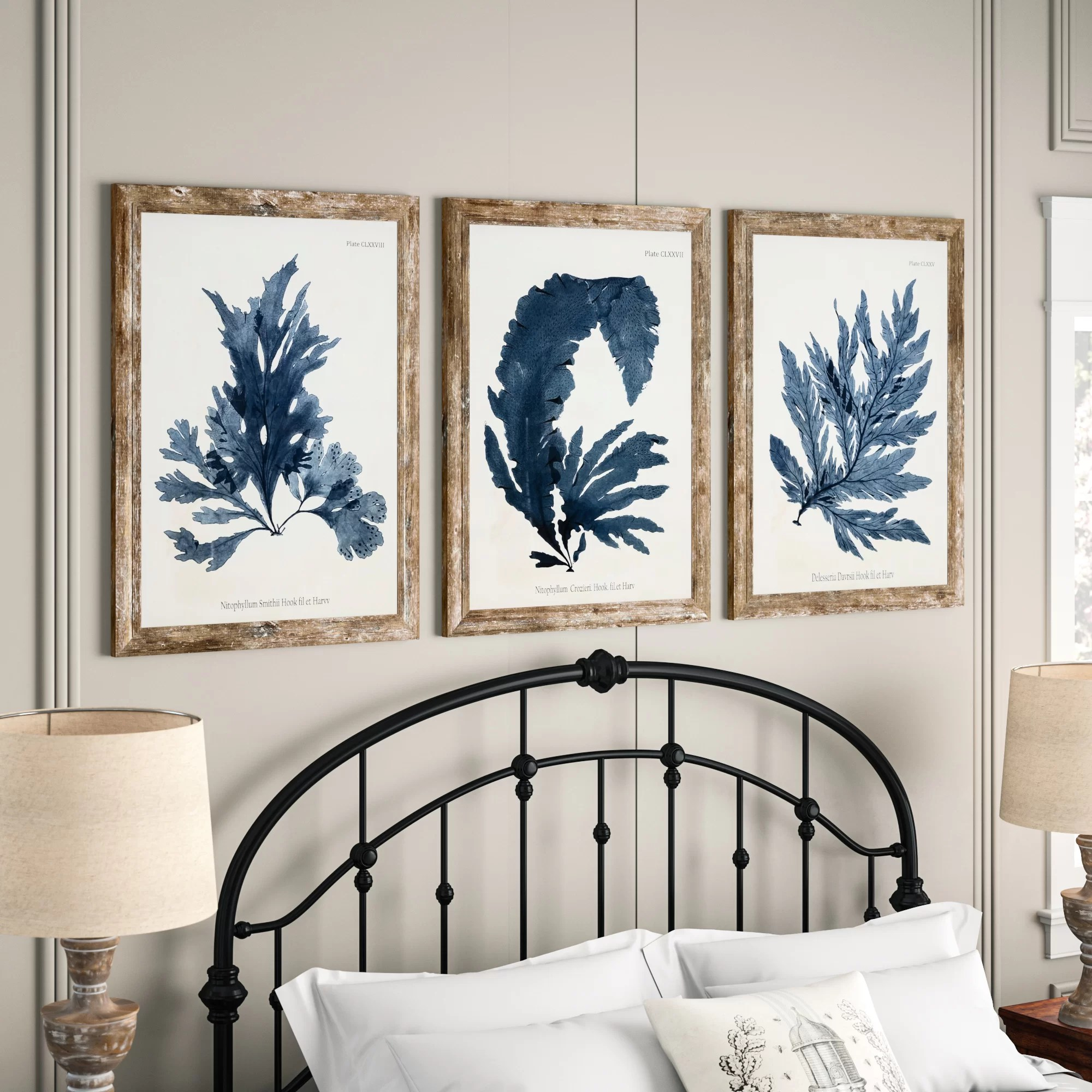 vintage fronds framed graphic
