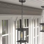 Gracie Oaks Contemporary Outdoor 1 Light Pendant Light Exterior Hanging Light Fixture With Black Finish And Seeded Glass Shade Wayfair Ca