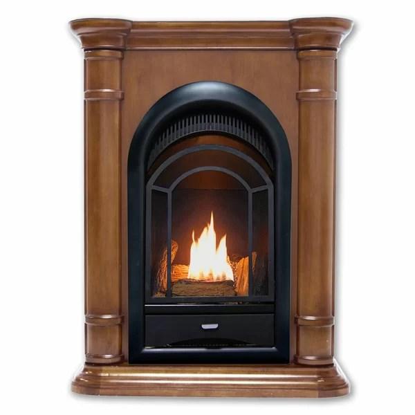 Procom Hearthsense Vent Free Propane Natural Gas Fireplace Insert Wayfair
