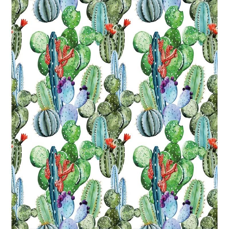 different cactus types watercolors