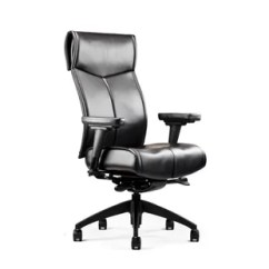 Neutral Posture Chair Review X Racer Deal With Nv High Back Executive Secure Shopping