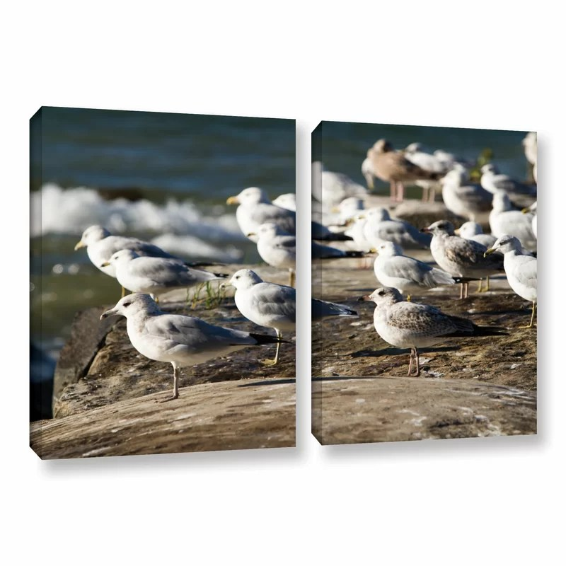 Pigeons by Cody York 2 Piece Photographic Print on Wrapped Canvas Set Size: 18 H x 28 W x 2 D