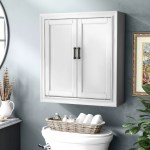 Andover Mills Jesse 23 75 W X 26 H X 8 D Wall Mounted Bathroom Cabinet Reviews