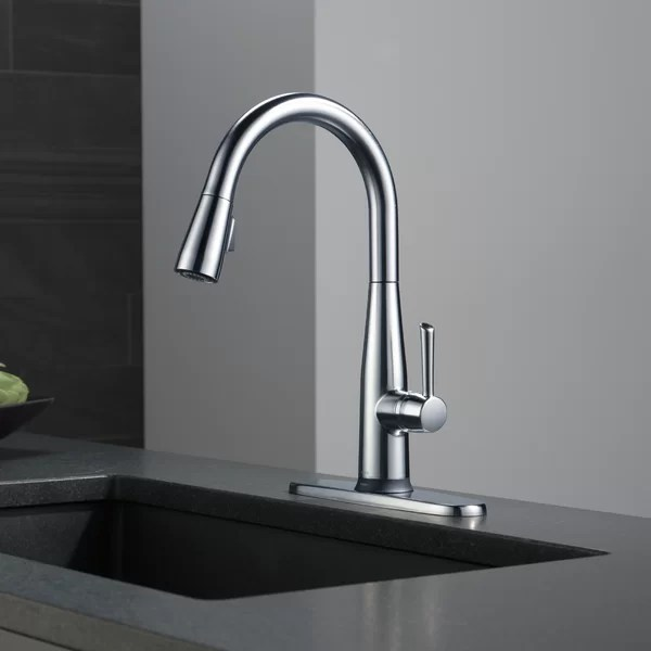 delta cassidy kitchen faucet