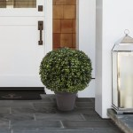 Pure Garden Boxwood Topiary In Planter Reviews Wayfair