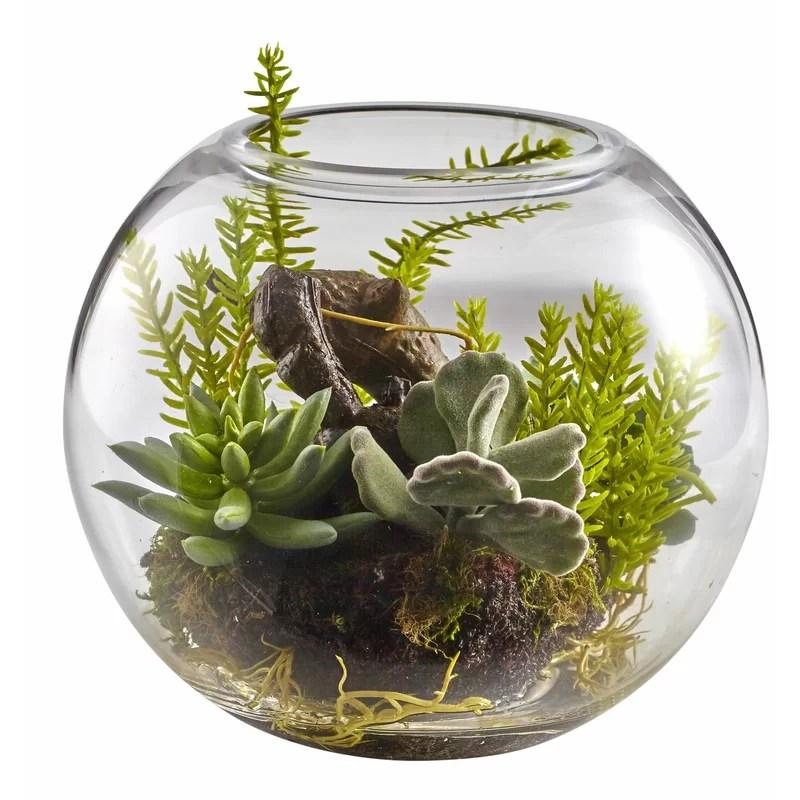 Mix Succulent Plant in Decorative Vase
