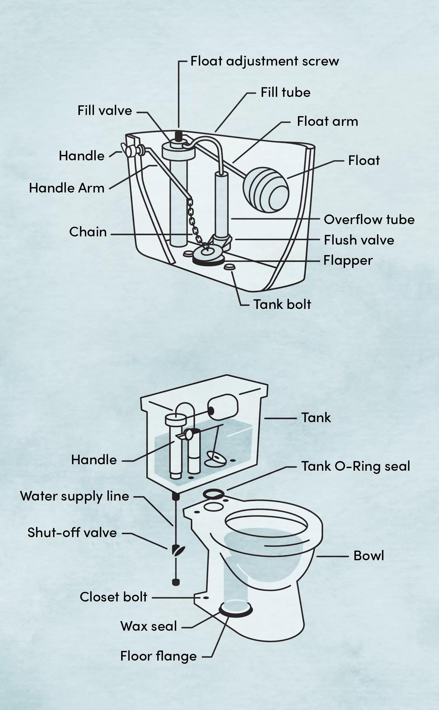 Toilet Tank Parts Diagram : toilet, parts, diagram, Parts, Toilet, Wayfair