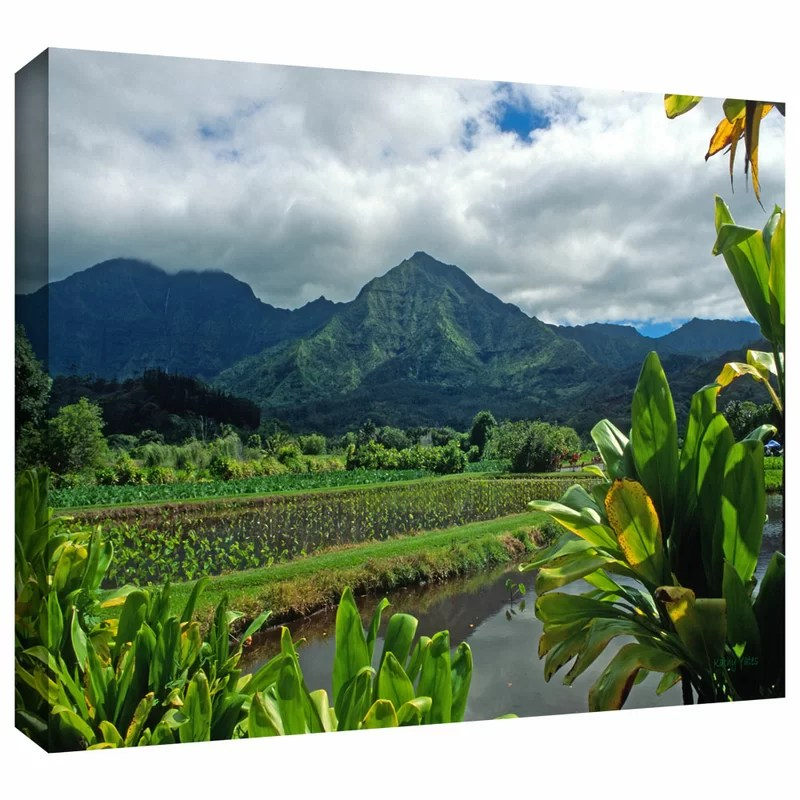 A Taro Farm in Hanalei by Kathy Yates Photographic Print on Wrapped Canvas Size: 16 H x 24 W