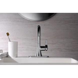 nita single hole bathroom faucet with drain assembly