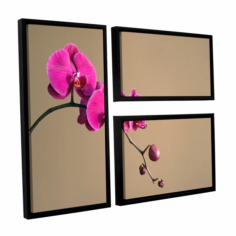 Magenta Orchid by Elena Ray 3 Piece Framed Photographic Print on Canvas Set
