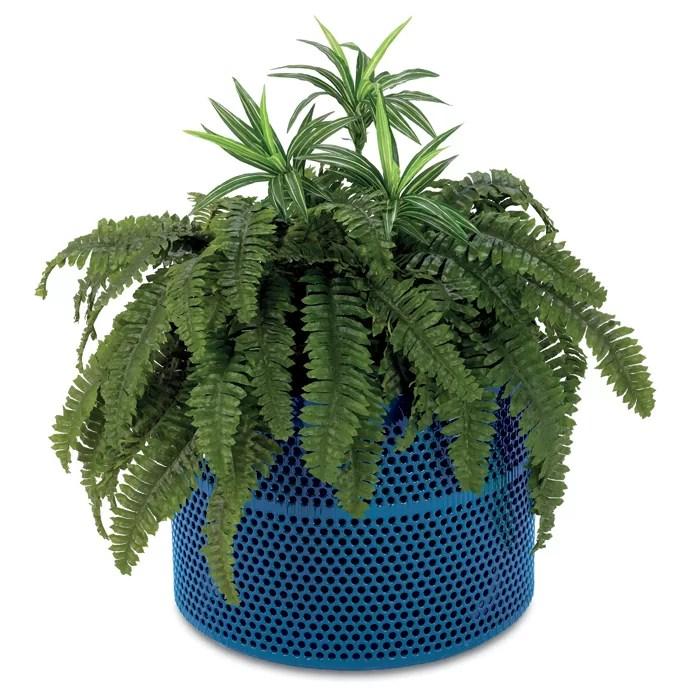 Rally Plastic Pot Planter Color: Green