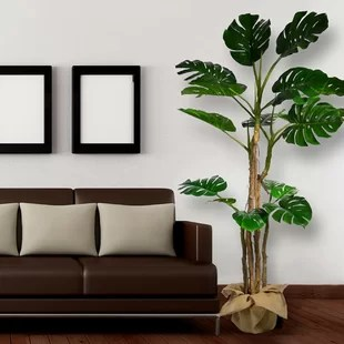 artificial trees for living room modern colour schemes 2017 you ll love wayfair ca monstera indoor outdoor decor floor foliage tree