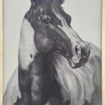 Union Rustic Indian Horse I Oil Painting Print On Wrapped Canvas