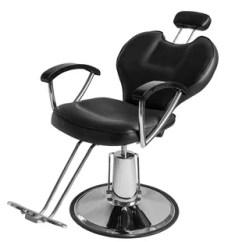Hydraulic Chair Lift Ikea Stool Chairs Wayfair Zanders Professional Portable Barber