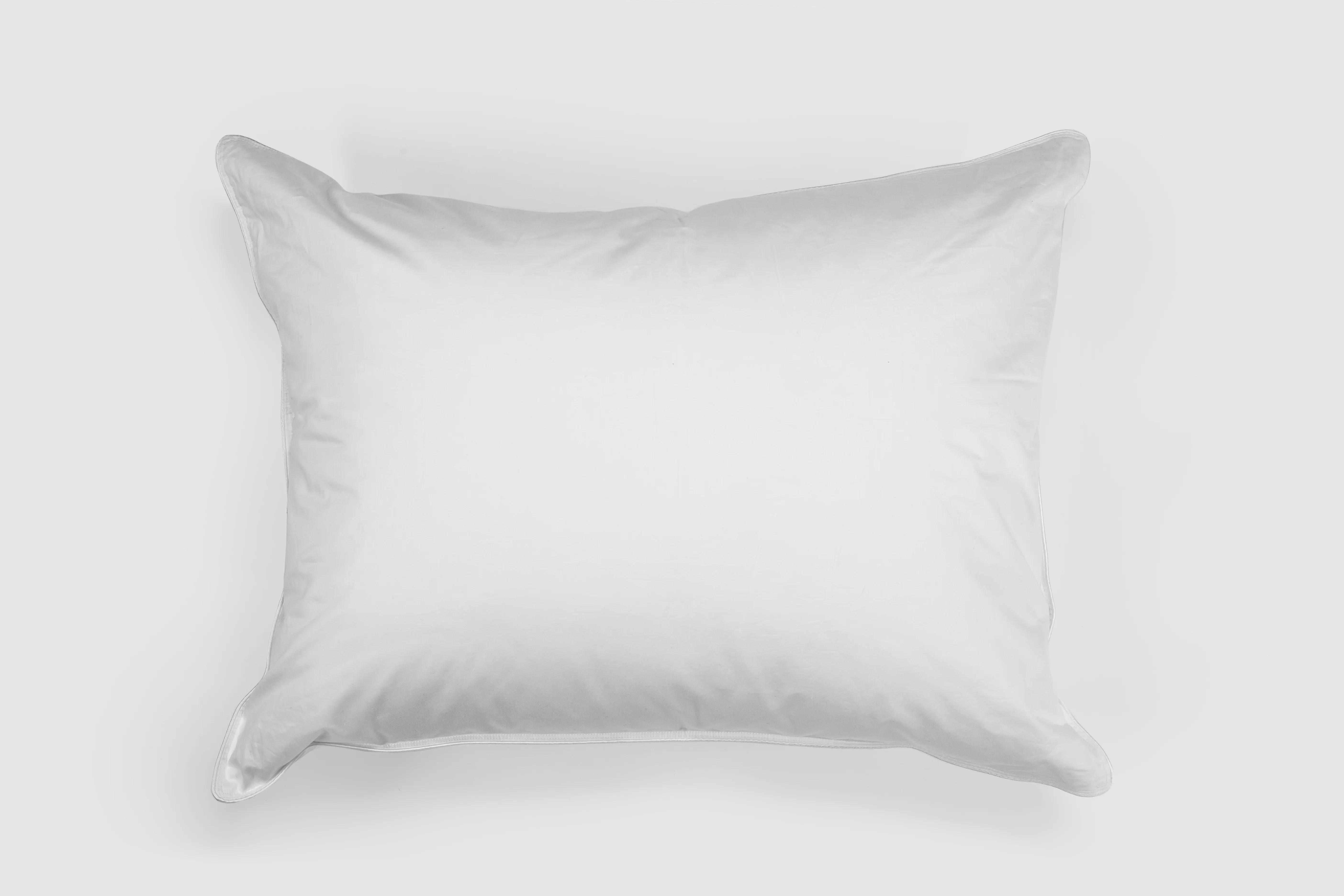 arsuite soft down pillow wayfair