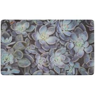 kitchen gel mats counter top table sets wayfair ca ankita succulents gelness mat