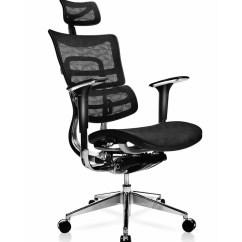 Executive Mesh Office Chair Hanging Australia Brayden Studio Canarsie Deluxe Ergonomic