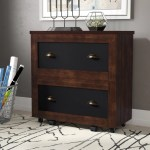 Details About 17 Stories Zakhar 2 Drawer Lateral Filing Cabinet
