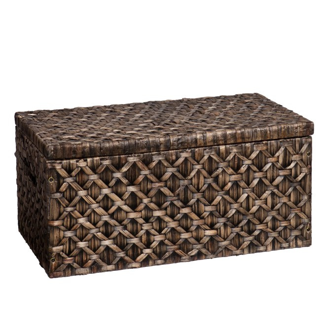 Decorative Trunks You 39 Ll Love Wayfair. Bedroom Storage Trunk Chest   Bedroom Style Ideas