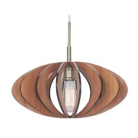 Woodbridge Canopy 1 Light Pendant & Reviews | Wayfair