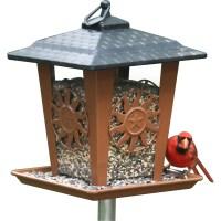 decorative bird feeders - 28 images - pet sun lantern ...