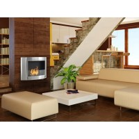 Eco-Feu Olympia Wall Mount Ethanol Fireplace | Wayfair